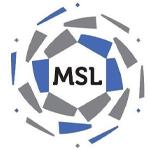 دوري الأمير محمد بن سلمان للدرجة الأولى السعودي