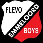 فليفو بويز
